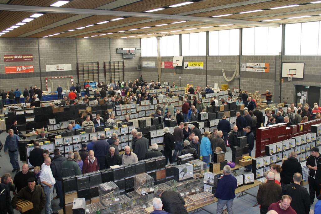Vogelmarkt Maart 2012 (foto: Janke Althuisius)