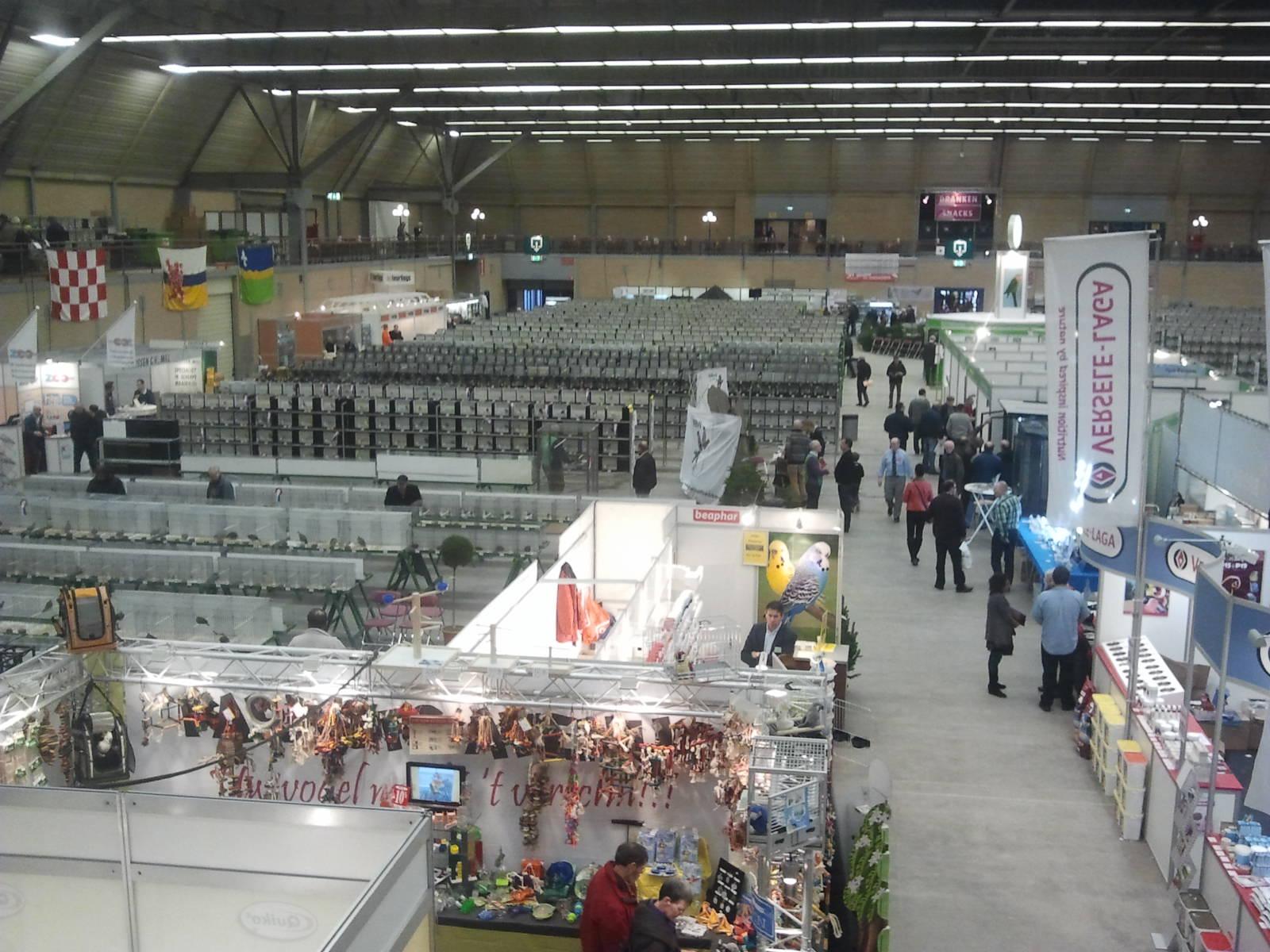Apeldoorn 2013