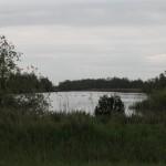 Easterskar (39)